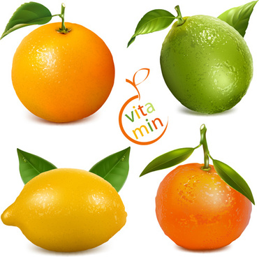 fresh orange and lemon vector