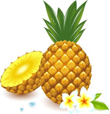 fresh pineapple vector graphic