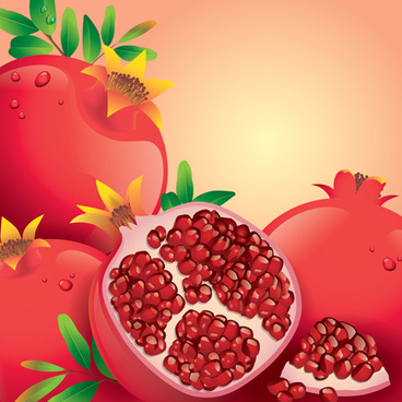 fresh pomegranate vector background