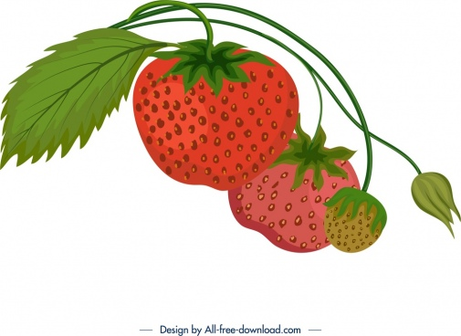 fresh ripe strawberry icon colorful classical design
