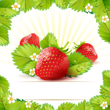 fresh strawberry elements background vector