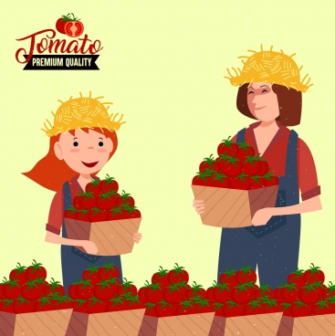fresh tomato advertising farmers red fruits icons