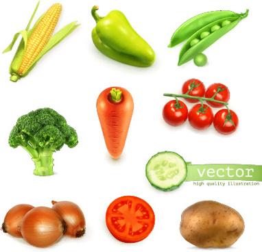 fresh vegetable shiny vector