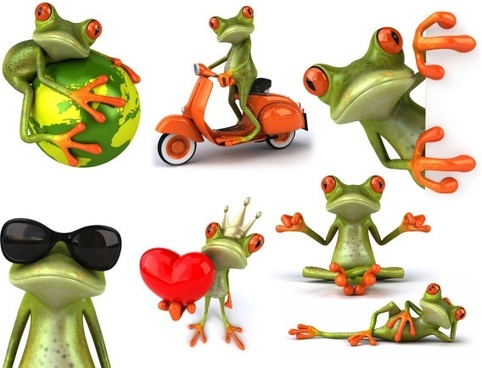 frog hd pictures