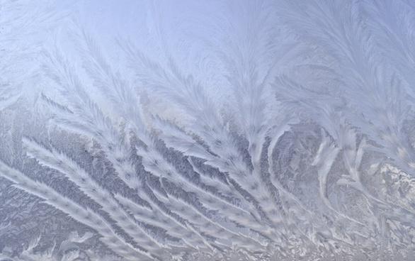 frost patterns winter frost