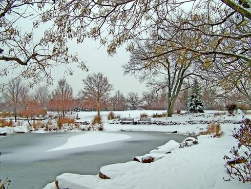 frozen pond winter