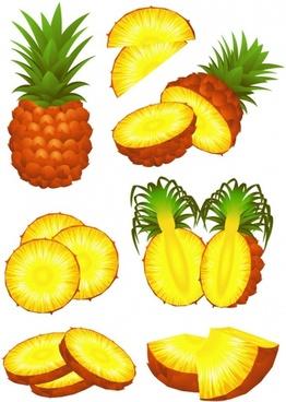 fruit 02 vector