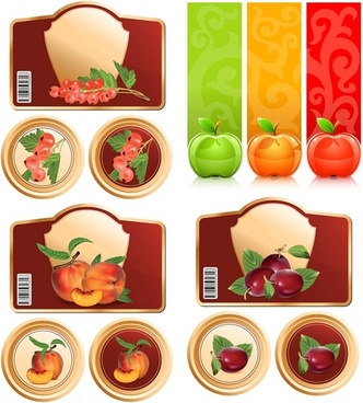 fruit and graphics vector
