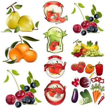 fruit and vegetable theme vector