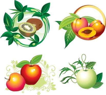 fruit designs vector