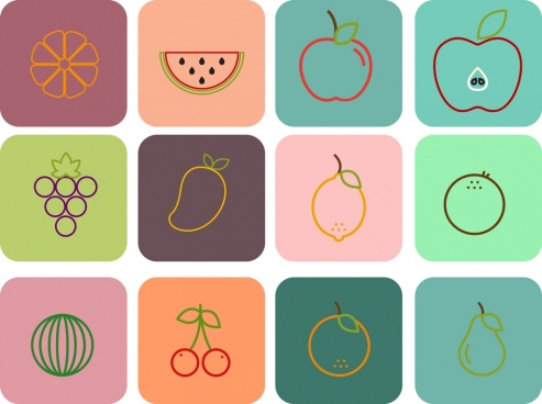 fruit icons outline colored flat isolation