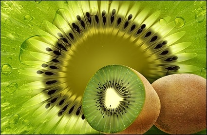 fruit kiwi psd layered