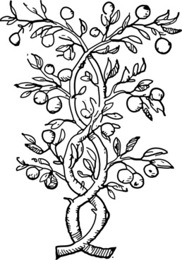 Fruit Tree Branches clip art