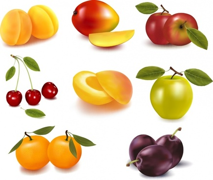 fruit icons shiny colored modern 3d design