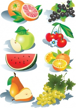 fruit free vector download 2 270 free vector for commercial use rh all free download com fruit vector png fruit vectors ai