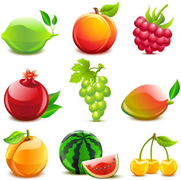 fruit vector food collections