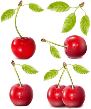 fruits food leaves red cherries