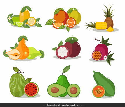 fruits icons bright colorful classic flat design