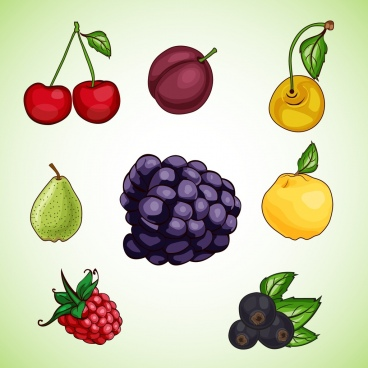 fruits icons collection flat colorful design
