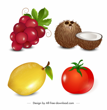 fruits icons colorful grape coconut lemon tomato sketch