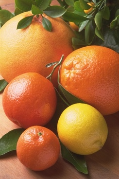 fruits orange citrus fruits