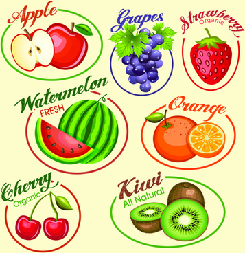 fruits slice labels vector