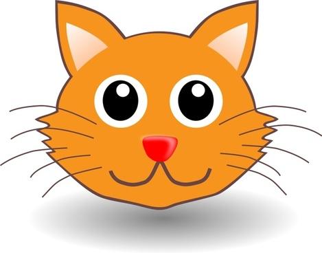 funny kitty face