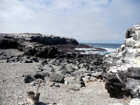 galapagos island rocky landscape