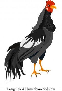 galliformes icon chicken sketch colored cartoon design