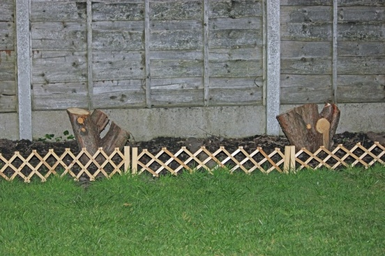 garden border with tree stumps