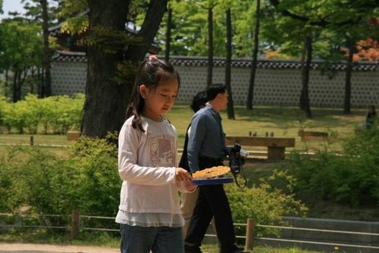 garden korean spring