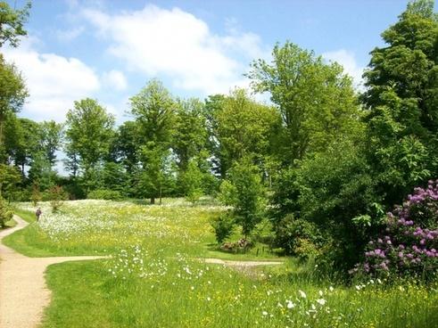 garden landscape nature