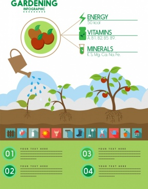 gardening work infographic fruit and tools symbols decoration