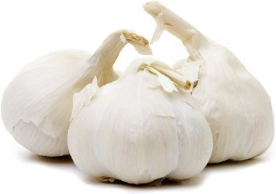 garlic hd picture 1