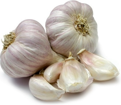 garlic hd picture 2