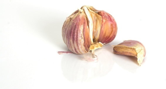 garlic hd picture 3