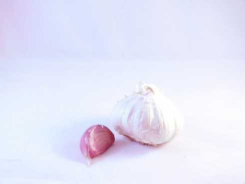 garlic white background