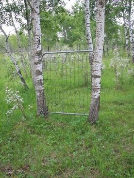 gate in the field