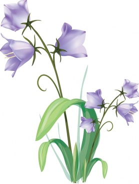 gentian painting 3d colored ornament modern design