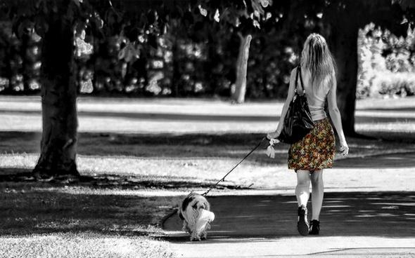 girl dog walk