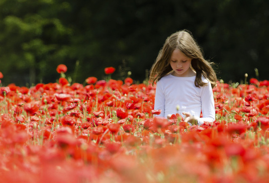 girl in the poppies
