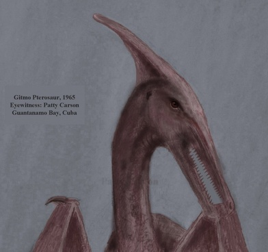 gitmo pterosaur or ropen of cuba