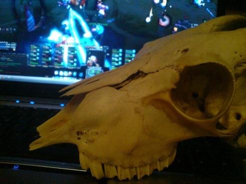 goat skull gaming