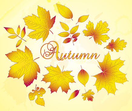 golden autumn leaves vector background