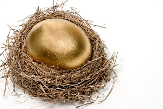 golden egg nest 03 hd picture