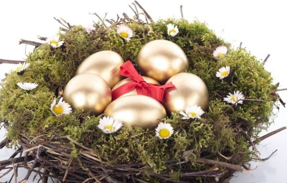 golden egg nest 04 hd picture