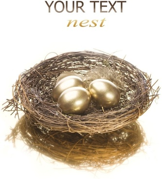 golden egg nest 05 hd pictures