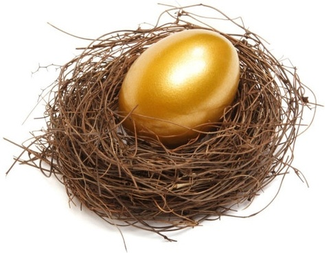 golden egg nest definition picture