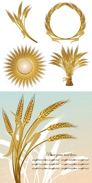 wheat decoration icons golden color various style design
