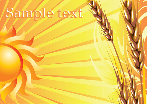 golden wheat vector background set